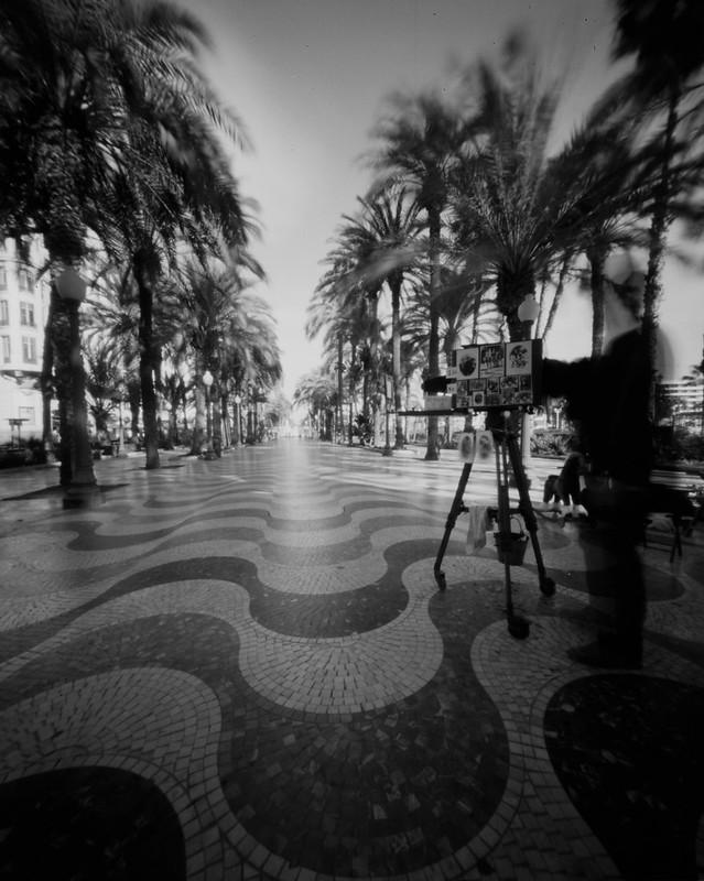 Camra d'Heure, Alicante