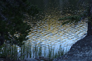 1389 Evening reflections on the wavelets on Rubicon Lake | by _JFR_