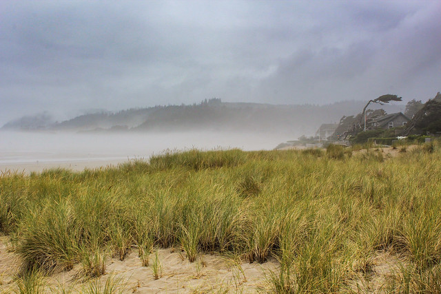 Morning fog on Cannon Beach