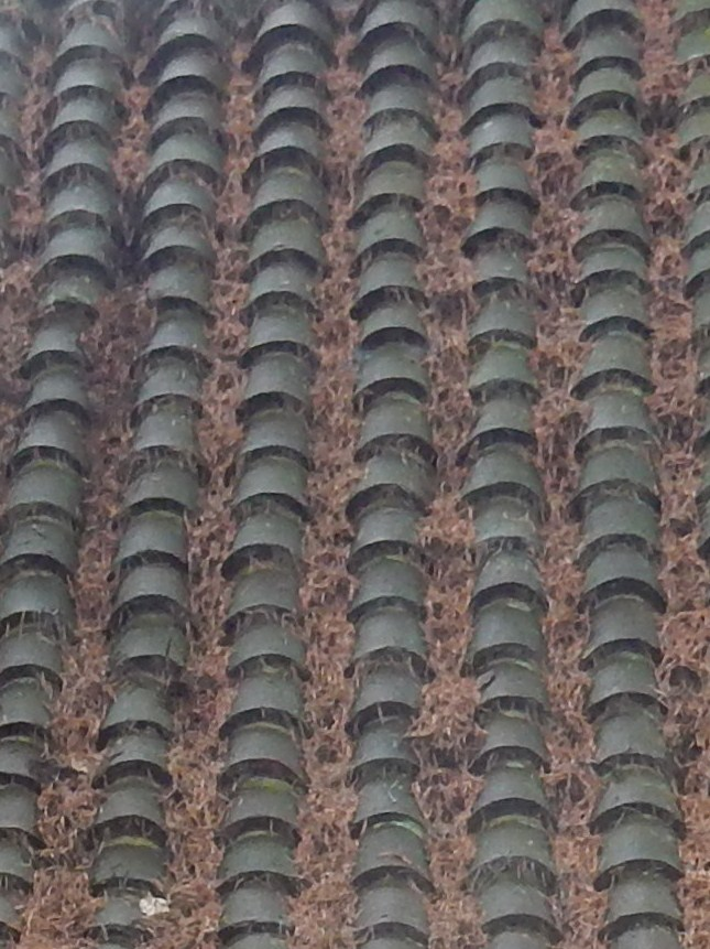 Gate (roof tiles) Wanborough to Godalming Watts Chapel