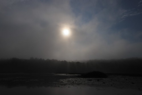 gmayster01 loveisblindness love mist canoeing sunrise gmayster flickr nature summer quebec canada amour sadness landscape