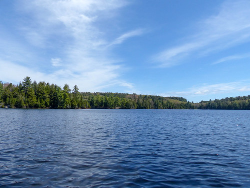 Algonquin Provincial Park (1) | by Brown Bear Travels