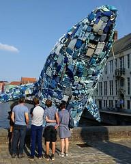 Whale watching in Bruges #sculpture #studiokca #triennalebrugge #triennalebrugge2018 #tribru18