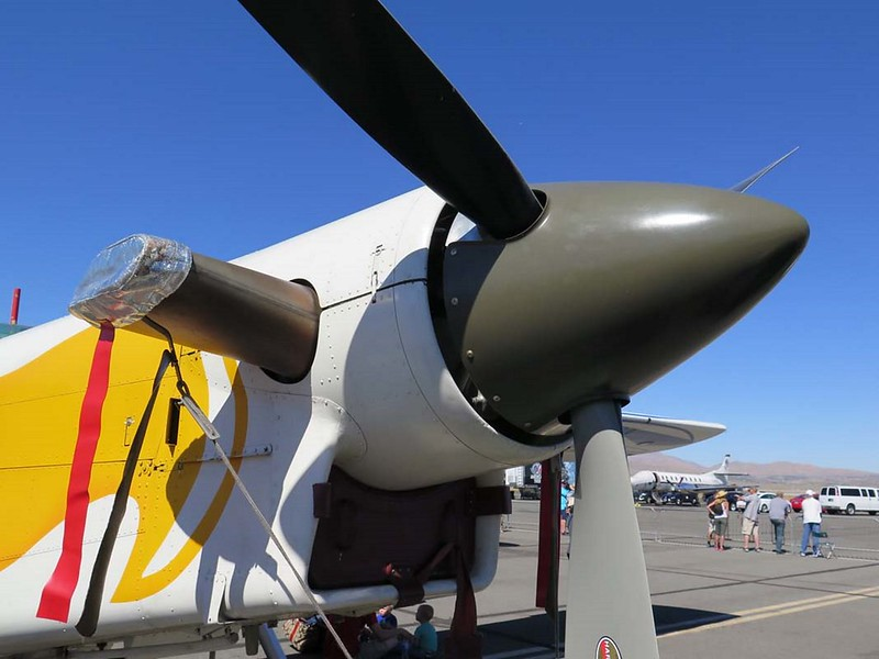 Pilatus PC-6 Porter 3