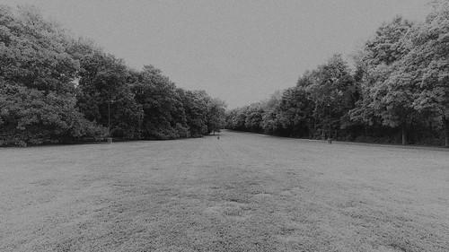 travellers rest plantation nashville tn tennessee the south landscape grounds bw black white monotone