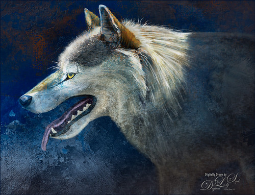 Drawn Image of a wolf