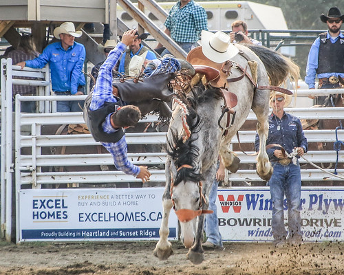 2018 CPRA Cochrane Aug11 - Saddle BroncB 321   by calgarypolicerodeophotos