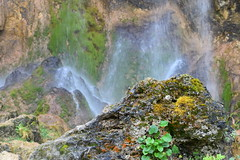 Pisoaia Waterfall, Romania