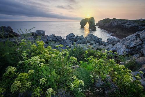 castro de las gaviotas spain asturias nature naturaleza landscape paisaje paisajes costaasturiana orienteasturiano nikon sunrise amanecer llanes costa