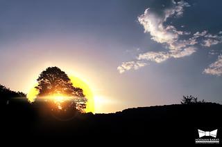 Sang deh Sunrise