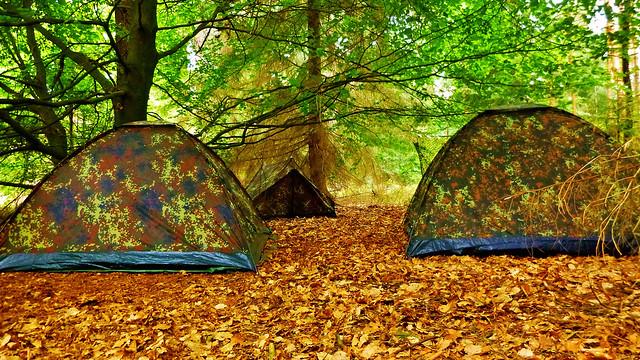 Flecktarn Tarnung Im Wald