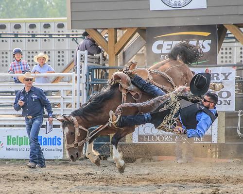 2018 CPRA Cochrane Aug11 - Saddle BroncB 324 | by calgarypolicerodeophotos