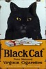 Lucky Black Cat - £460