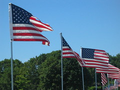 flags along Stacy Boulevard