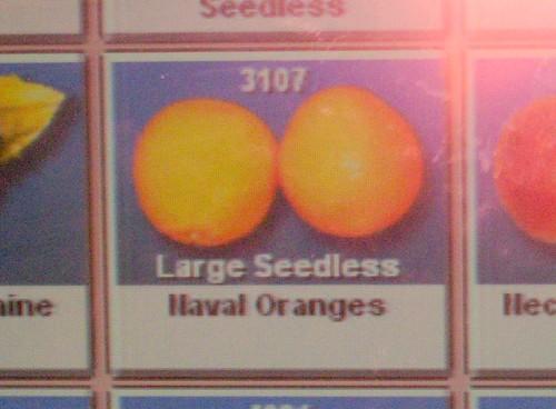 Oranges at Sea