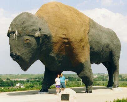 Un búfalo que casi se ve desde el espacio, en Jamestown, (Dakota del Norte)