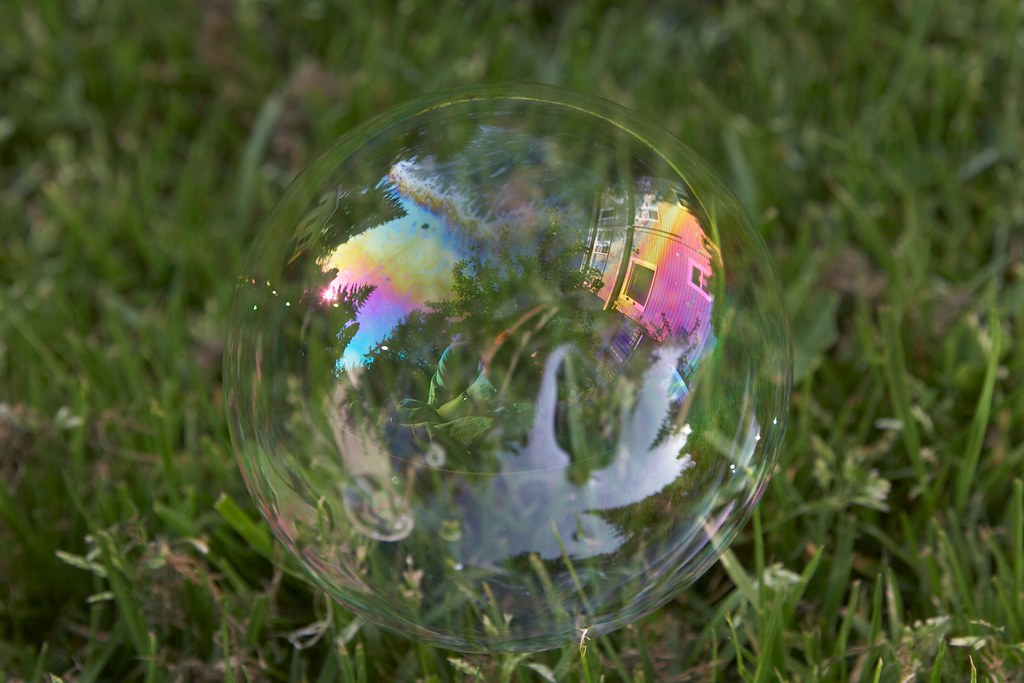 Playing with bubbles in the backyard