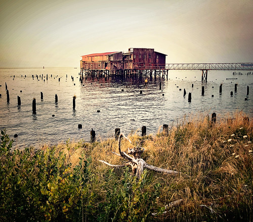 bigred cannery columbiariver oregon astoria