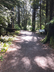 Sitka National Park Path