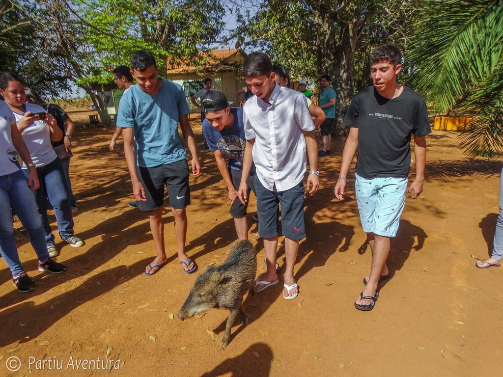 Educação Ambiental - Iporá - Pne22