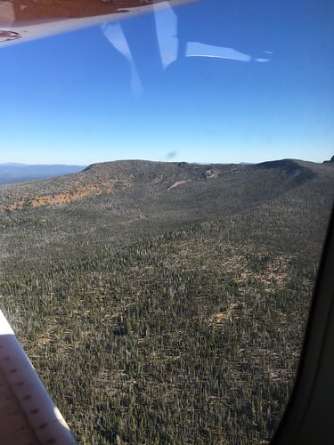 usda usfs forestservice foresthealthprotection stateandprivateforestry region6 r6 foresthealth aerialdetectionsurveys aerialdetectionsurvey ads aerialphoto oblique oregon 2018 gearhartmountain gearhartmountainwilderness fremontwinemanationalforest mountainpinebeetle whitebarkpine lodgepolepine treemortality deadtrees insectdamage forestinsect aerialsurvey