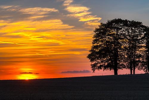 upperfranconia germany landscape sunset trees groupoftrees sun clouds redsky