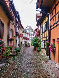 Eguisheim, Alsacia, France; after the rain