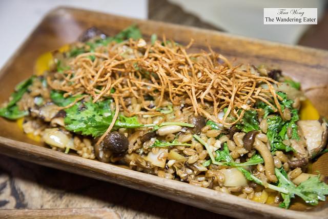 Warm Mushroom Salad - Sautéed wild mushrooms, farro, toasted hazelnuts, mizuna