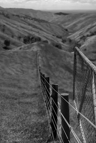 landscape ilce7m2 sony 2018 monochrome wairarapa castlepoint blackandwhite rural farm leadinglines fence gate pastoral