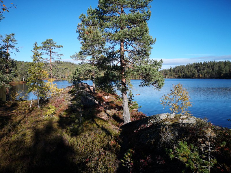 08-Flagervann