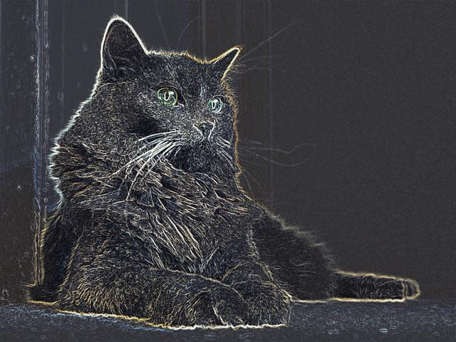 Electric kitty -[ HSS ]-
