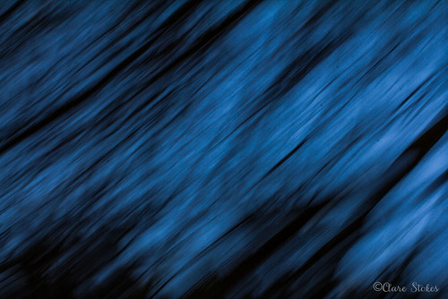 ICM Blue | by BambersImages