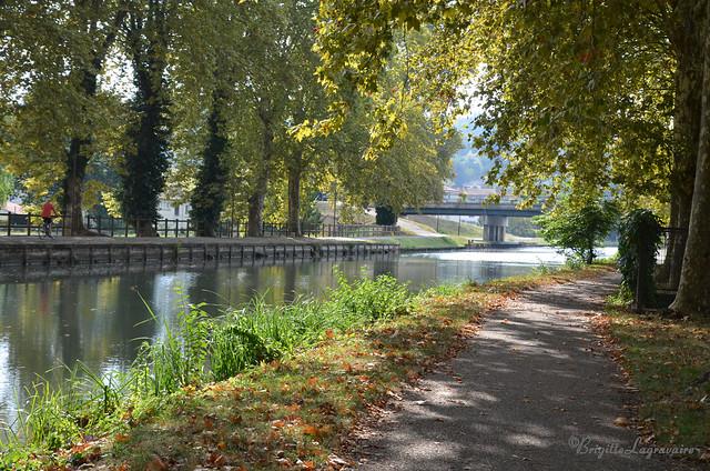 Les ombrages, le clair-obscur du canal (Agen)