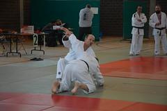 Krekeltornooi_066