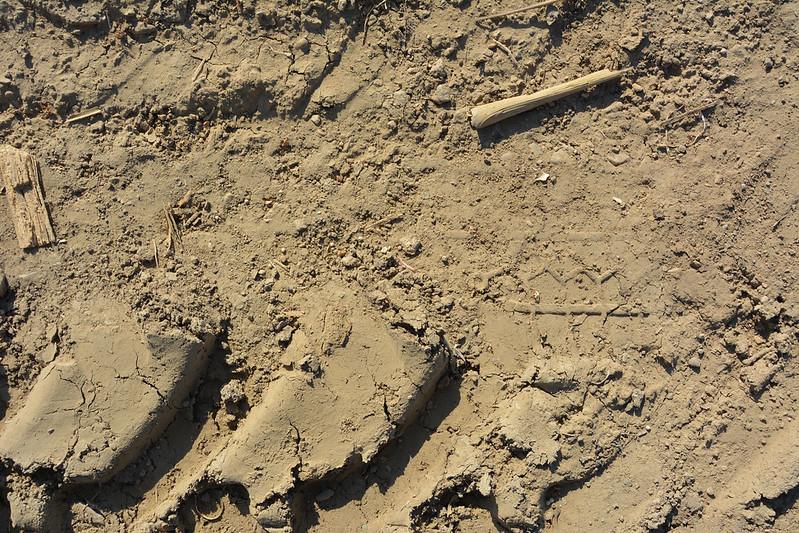 Brown Ground Texture #03
