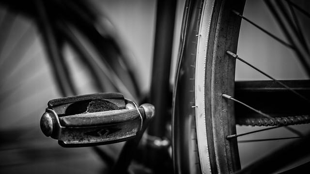 Webcycle