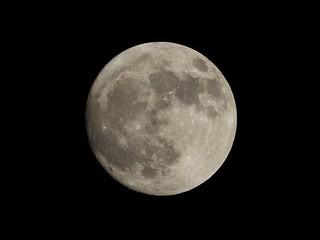 ~Luna~ | by ForeverAileen