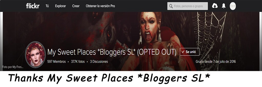 Thanks My Sweet Places Bloggers SL