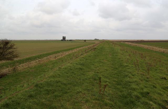 Sea wall near Wainfleet