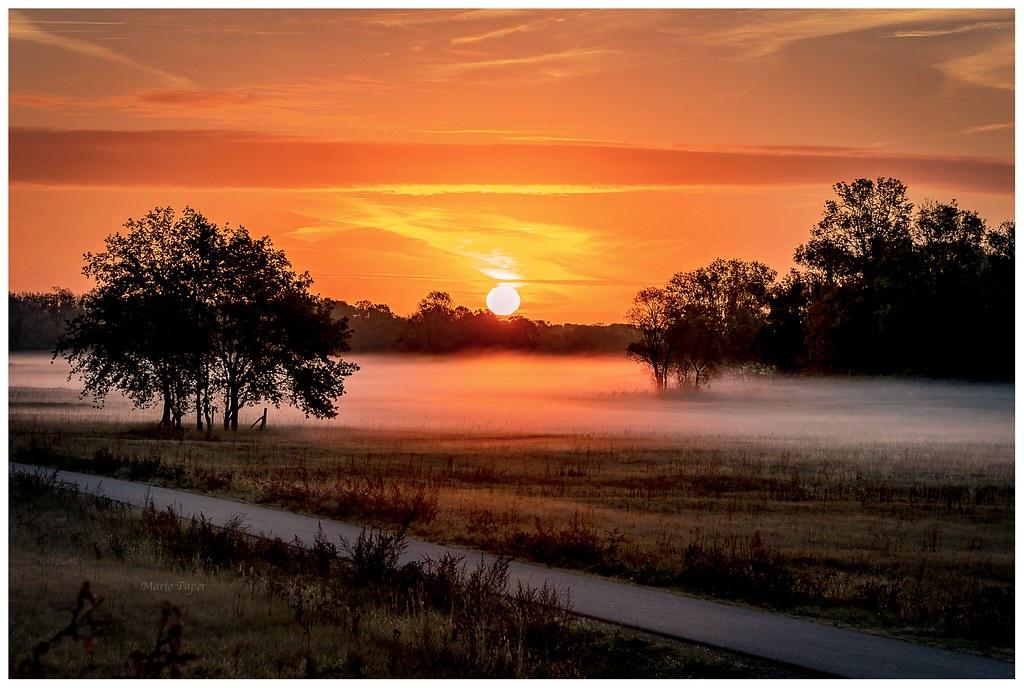 Schönen einen morgen tag und guten Guten Morgen