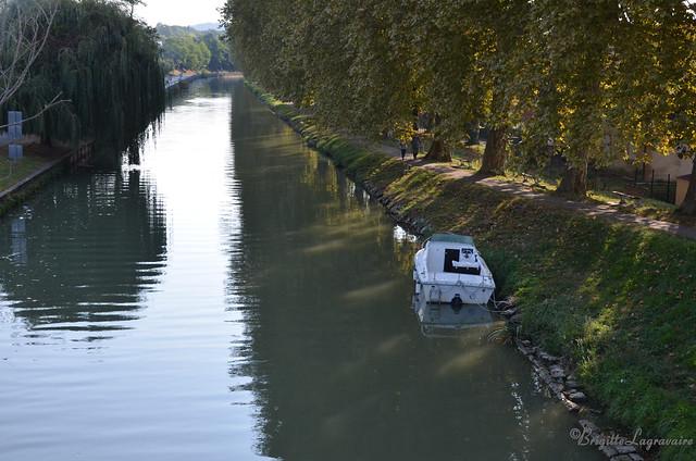 Matin calme sur le canal
