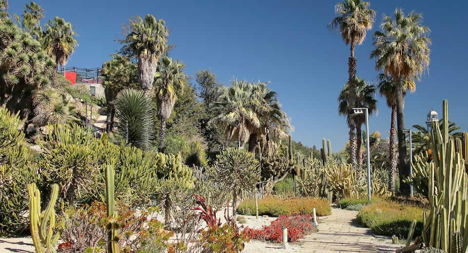 Jardins de Mossèn Costa i Llobera | Mooistestedentrips.nl