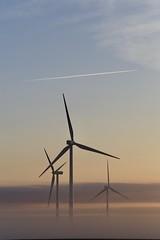 Windfarm, Odell, Illinois