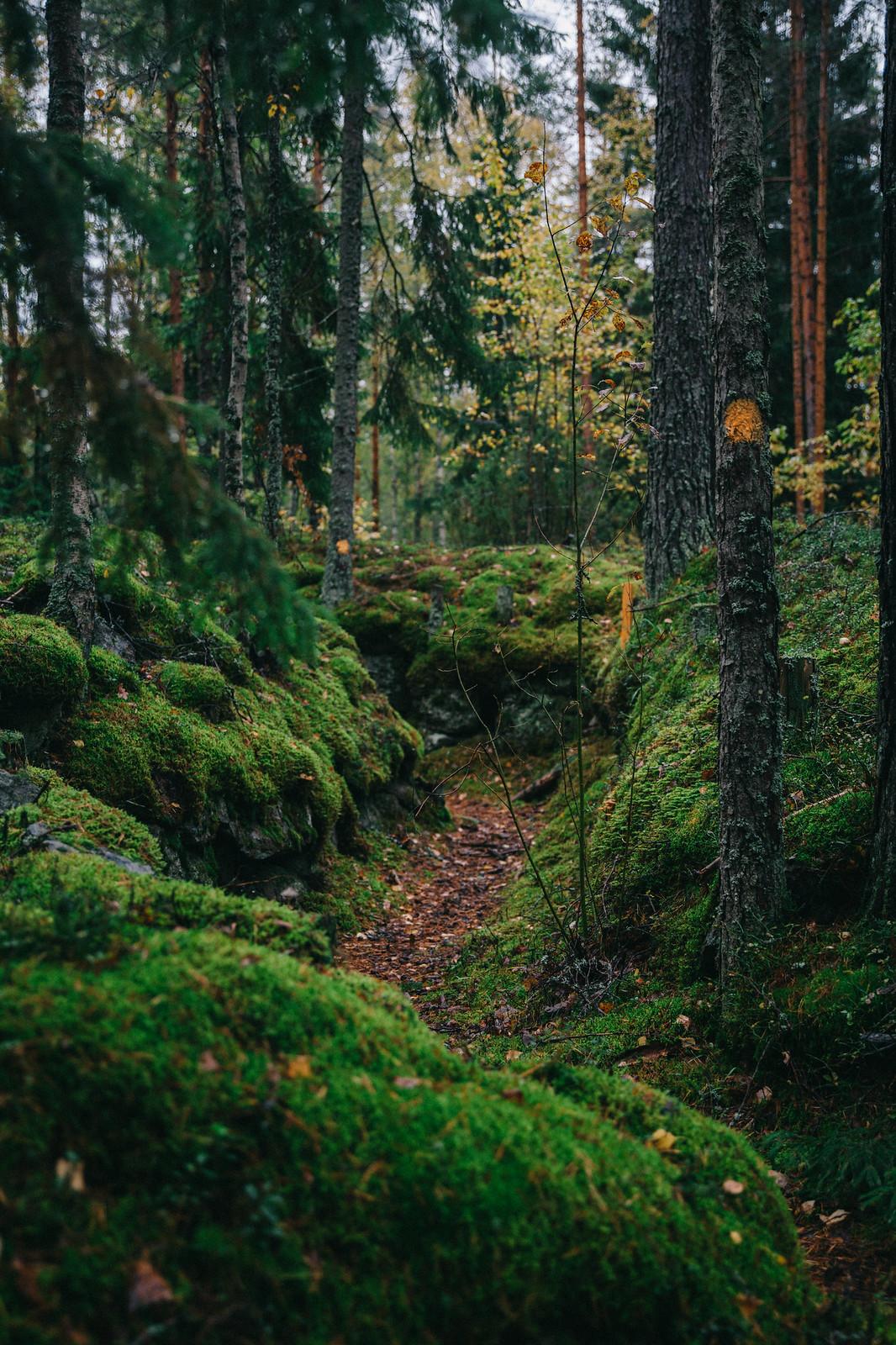 Erältä, eräistä - Tuntemattoman polku, Virolahti - Marinella