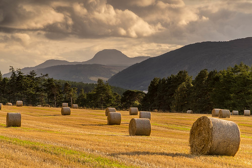A Dores Field View. | by Gordie Broon.