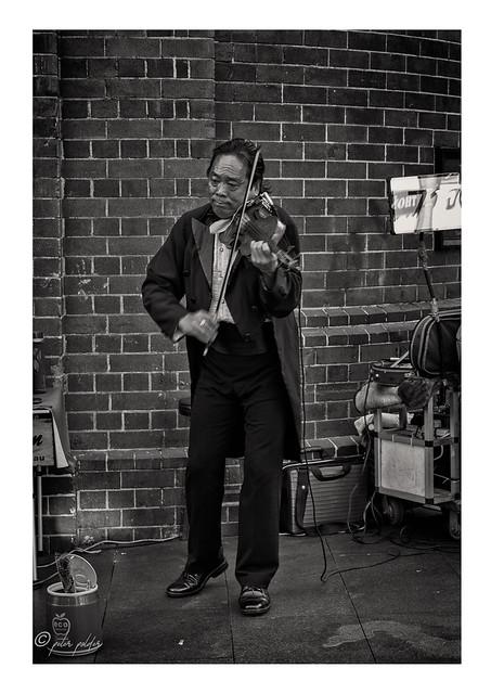 The Street Violinist