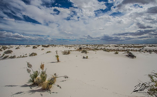 White Sands National Monument | by Frank Portillo