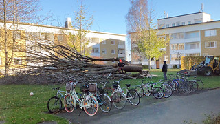 deadtree | by talonväki