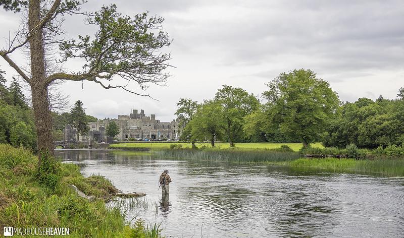 Ireland - 1341