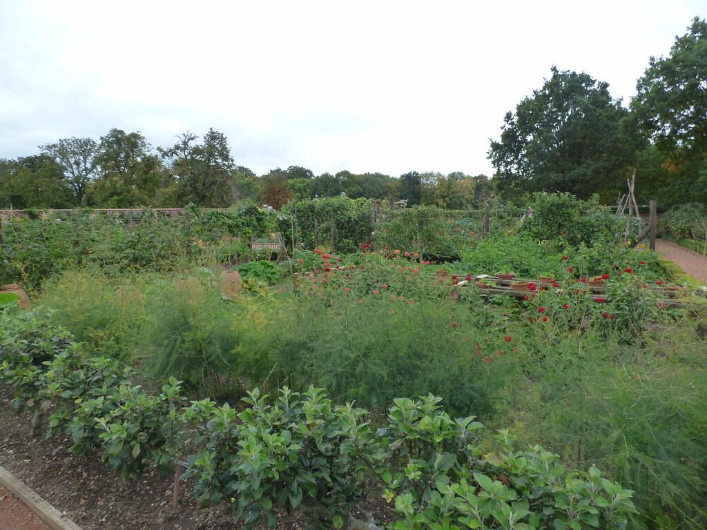 Kitchen Garden At Packwood House A Late September 2018 Vis Flickr